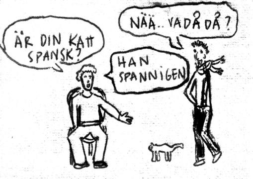 Göteborgsvits - katt i spanien - Barribo - Lina Barryd